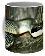 The Apple Vender Coffee Mug