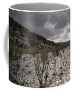 The Bank Of The Nueces River Coffee Mug