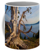 The Banks Of Crater Lake Coffee Mug