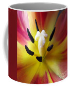 The Beauty From Inside Square Format Coffee Mug
