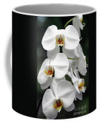 The Beauty Of Orchids  Coffee Mug