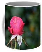The Big Rain Drop Coffee Mug