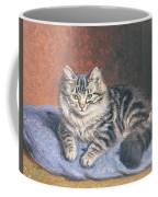 The Blue Cushion Coffee Mug