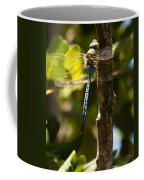 The Blue Dragon Fly Coffee Mug