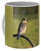 The Bluebird Of Happiness Coffee Mug