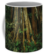 The Buttressed Roots On A Strangler Fig Coffee Mug by Steve Winter