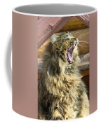 The Cat Who Loves To Sing Coffee Mug