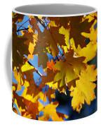 The Colors Of Autumn In Arizona  Coffee Mug