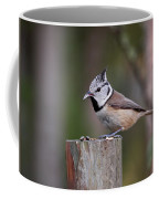 The Crested Tit Having Lunch Coffee Mug