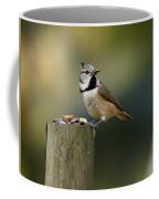 The Crested Tit Coffee Mug