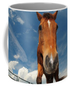 The Curious Horse Coffee Mug