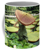 The Cut Pad Of A Victoria Amazonica Coffee Mug