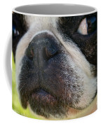 The Evil Eye Coffee Mug