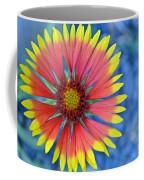 The Extrovert Coffee Mug