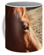 The Eye Of The Horse Coffee Mug by Robert Margetts