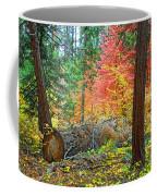 The Fallen Coffee Mug