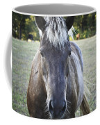 The Farmers Horse Coffee Mug