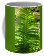 The Fern Coffee Mug