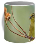 The Finch  Coffee Mug