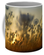 The Fire Of The Sun Coffee Mug