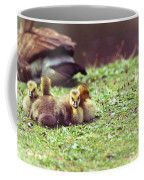 The First Family Coffee Mug