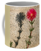 The Flower And Its Shadow Coffee Mug