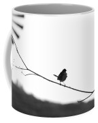 The Fly Catcher Coffee Mug