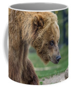 The Grizzly In Spring Coffee Mug