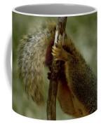 The Hang On Tail Coffee Mug