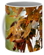 The Hickory In Autumn 2 Coffee Mug