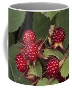 The Invasive Wine Berry And Shield Bugs Coffee Mug