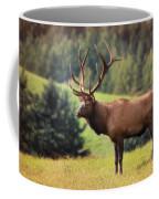 The King Of Winslow Hill Coffee Mug