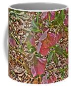 The Lenten Rose Coffee Mug