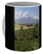 The Lush Garden Landscape Of A Vineyard Coffee Mug by Stacy Gold