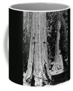 The Mariposa Grove In Yosemite Coffee Mug