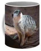 The Meercat  Coffee Mug