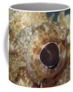 The Mosaic Eye Of The Venemous Coffee Mug