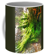 The Moss Covered Roots Coffee Mug