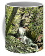 The Mystery Waterfall Coffee Mug