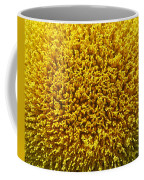 The Nature Of A Sunflower Coffee Mug