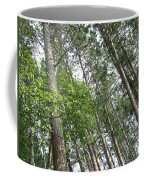 The Northwoods Coffee Mug