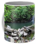 The Ole Swimming Hole Coffee Mug