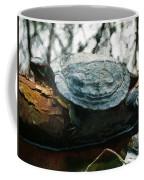The Red Eared Slider Coffee Mug