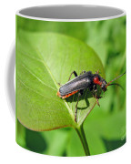The Rednecked Bug- Close Up 2 Coffee Mug