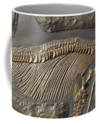 The Ribs And Spine Of Ichthyosaur Coffee Mug