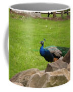 The Rocking Bird Coffee Mug