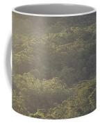 The Schlerophyll Forest Canopy Coffee Mug