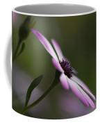 The Serenity Of Spring  Coffee Mug