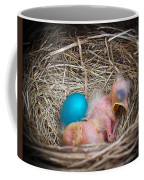 The Shimmering Blue Egg Coffee Mug