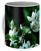 The Soft White Blossom  Coffee Mug